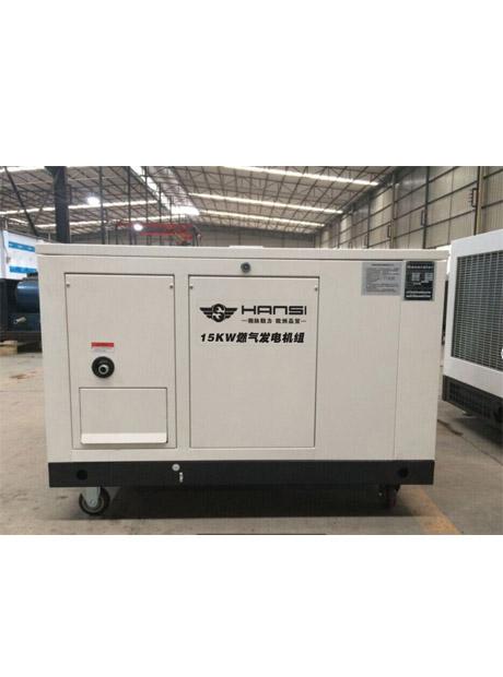 15KW燃气发电机组HS15GFJ